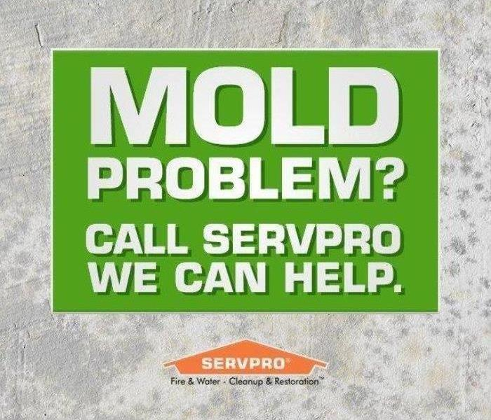 Mold Remediation Conditions In Eaton County Might Be Right For Mold