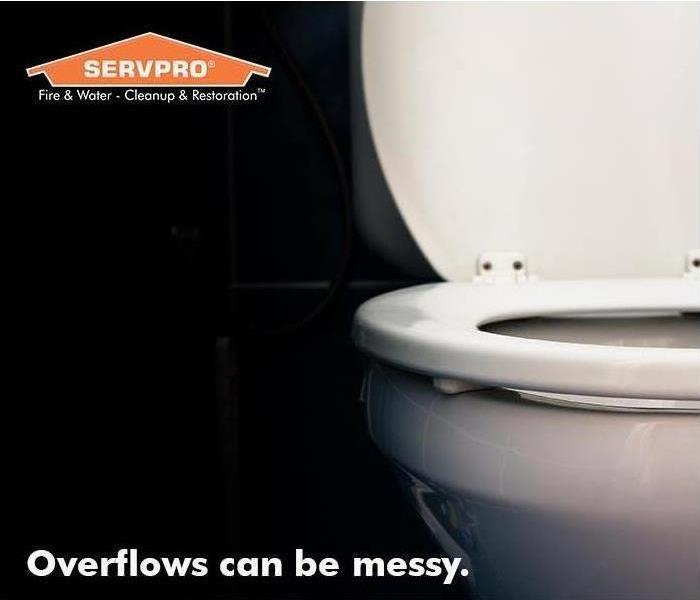 A white porcelain toilet with SERVPRO house logo in the corner