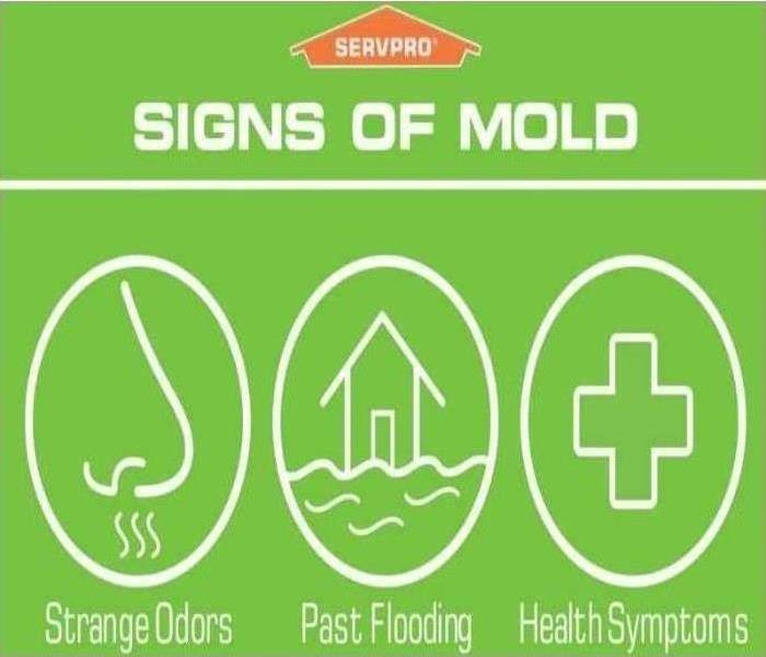 Signs of mold image