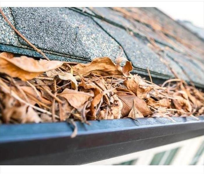 Rain Gutters are full of leaves and debris
