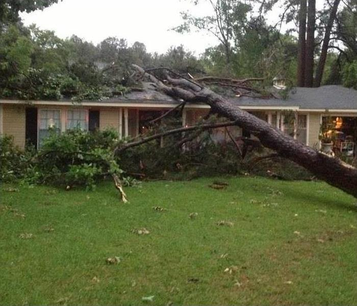 A mature tree falls on the roof of a house, causing exterior and interior damage on the home.