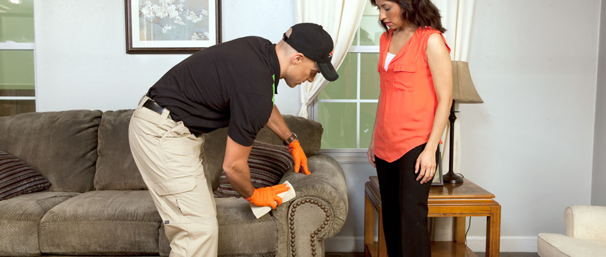 Delta Township, MI carpet upholstery cleaning