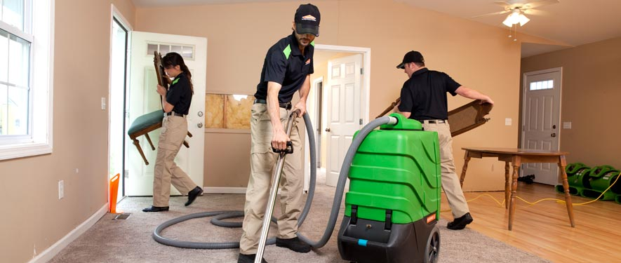 Delta Township, MI cleaning services
